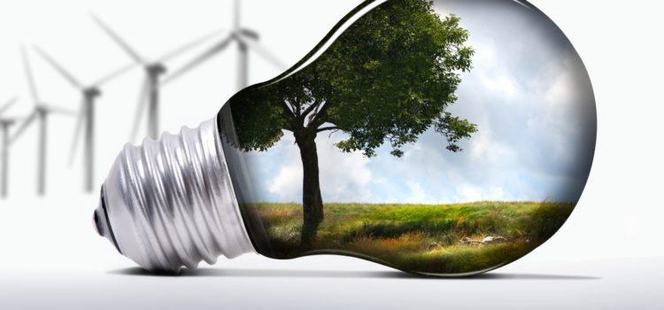 Сервис по экологической уборке открылся в Беларуси
