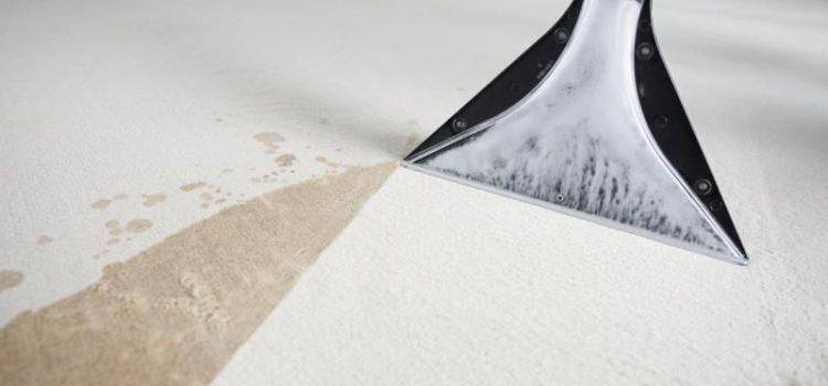 Плюсы и минусы химчистки ковров