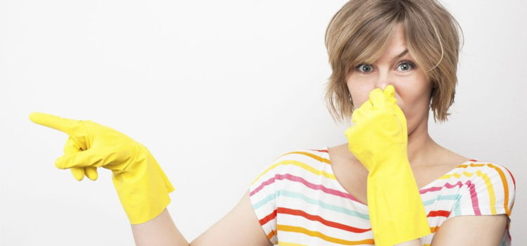 Убираем неприятные запахи в квартире. Полезные советы